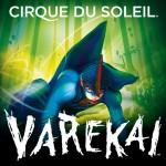 varekai-by-cirque-du-soleil[1]